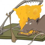 How to Build a Social Media Mousetrap