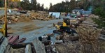 UPDATE: Logger Evicted From Old Santa's Village
