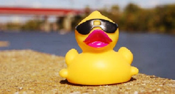 Feeling Ducky? Win $1,000 During Lake Gregory Rubber Duck Derby