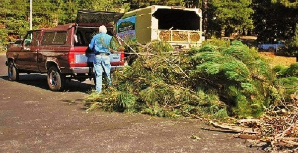 Free Chipper Days Helps Residents Dispose Of Ladder Fuels October 25-26