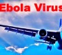 Congressman Paul Cook Calls For Travel Ban From Ebola-Stricken Nations