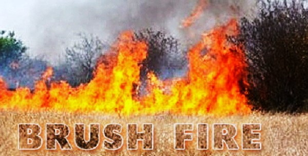 UPDATE: South Fire In Big Bear Burns Quarter-Acre Of Vegetation