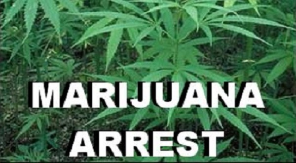 Twin Peaks Man Faces Marijuana Sales/Maintaining A Drug House Charges
