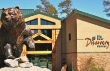 INTERNATIONAL MIGRATORY BIRD DAY AT BIG BEAR DISCOVERY CENTER