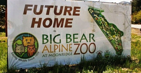 UPDATE 2: Big Bear Alpine Zoo's Relocation Contract Approved - Groundbreaking Friday