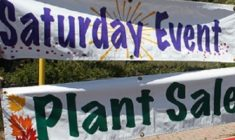 The Bloomin' Biannual Plant Event At Heaps Peak Arboretum May 28