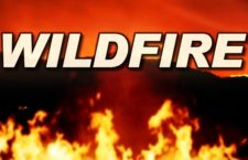 Vegetation Fire at Bottom of Hwy 38, Highland UPDATE 16 - Sunday July, 16, 7:21 a.m.