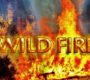 UPDATE 2: Palm Fire At Bottom Of Highway 330 - Full Containment