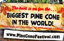 11th Annual Pine Cone Festival Saturday, October 14 - UPDATE 1 - Wednesday September 27