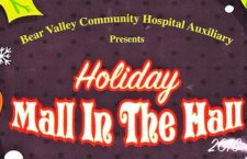 Mall in the Hall: Christmas Comes Early At Hospital Auxiliary's Event