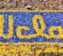 """UCLA MOUNTAIN BRUINS: """"Locals Night Out"""" October 30"""
