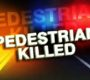 PEDESTRIAN FATALITY: Mountain Resident Dies (CORRECTED INFORMATION)